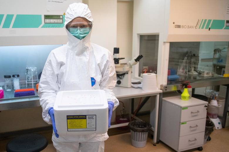 Pierwszy polski test na koronawirusa stworzyli poznańscy naukowcy z Instytutu Chemii Bioorganicznej Polskiej Akademii Nauk w Poznaniu. Niestety, nie