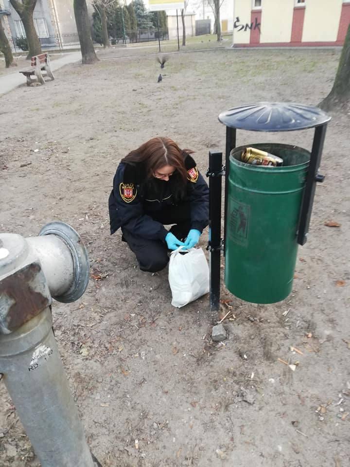 Podrzucali śmieci w Inowrocławiu. Zostali ukarani mandatami