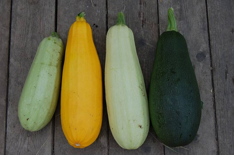 Cukinia występuje w różnych odcieniach barwy zielonej oraz żółtej.