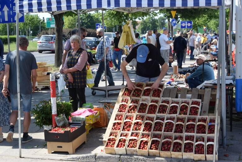 Dobre wiadomości dla kupujących z bazarów w Kielcach. W piątek 11 czerwca taniej płaciliśmy za truskawki, pomidory, ogórki, paprykę czy kalafiory. Królowały