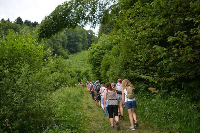 """Ścieżka """"Dziki Hon"""" to nowa atrakcja turystyczna w Bieszczadach. Idealna trasa na spacer wokół Cisnej [ZDJĘCIA]"""