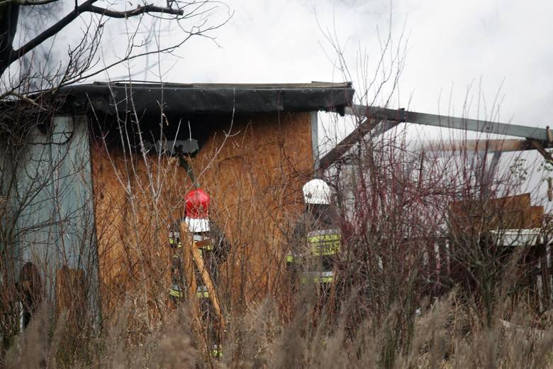 W sobotę (14 kwietnia) przed godz. 9 doszło do tragicznego odkrycia w kompleksie działkowym przy ul. Mostowej w Świeciu. W altanie znaleziono zwłoki