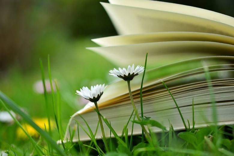 Polacy coraz rzadziej sięgają po książki. Sprawdziliśmy więc, które biblioteki w powiecie inowrocławskim mają najwięcej czytelników. Ranking sporządziliśmy
