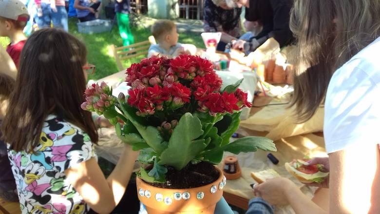 Pogoda jak marzenie, zadowolone dzieci - tak się udał wczorajszy piknik przy Domu Muz przy Okólnej. Podczas imprezy na Rudaku sadziliśmy, przesadzaliśmy