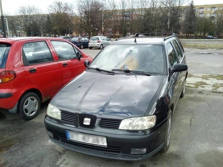 Można kupić w atrakcyjnej cenie samochód na Podkarpaciu. Zobaczcie oferty licytacji komorniczych w naszym regionie. Oferty pochodzą z Serwisu Internetowego