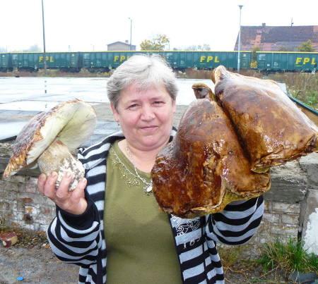- Te trzy grzyby ważą razem ponad dwa kilo i sześćdziesiąt deko - mówi Aniela Harazim.