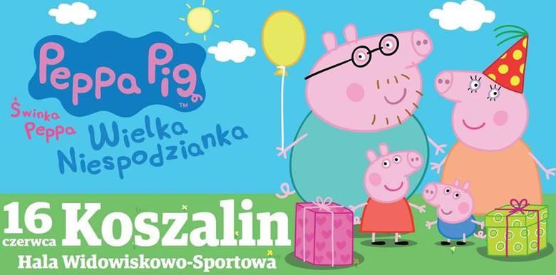 Co robić z dziećmi w Koszalinie? Atrakcje i wydarzenia dla dzieci w Koszalinie na słoneczną pogodę i na deszcz.