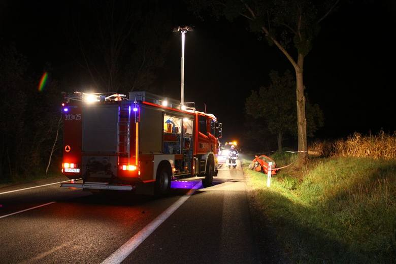 Dwie osoby ranne i rozbity samochód, to efekt nocnego wypadku w Dąbrowie. Kierowca chciał ominąć dzika, uderzył w drzewo.