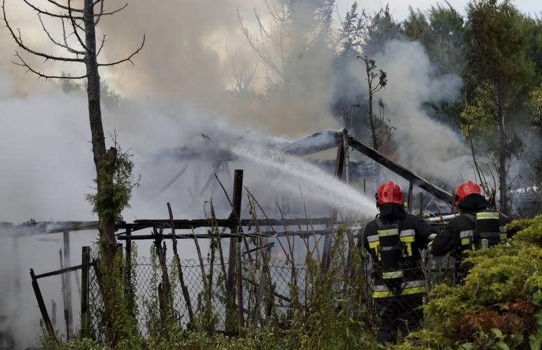 Kompletnemu zniszczeniu uległy drewniane zabudowania znajdujące się na jednej z działek ogrodniczych, przy ul. Gdańskiej w Słupsku.