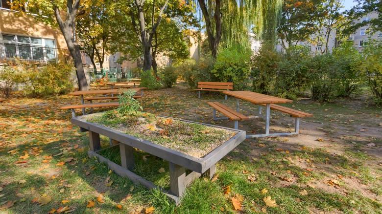 Przy poznańskich przedszkolach powstają naturalne place zabaw.O bioróżnorodność można troszczyć się na wiele sposobów. Jednym z nich jest dbałość o zieleń