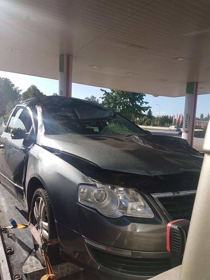 Policjant zginął, gdy w jego samochód uderzył jeleń.