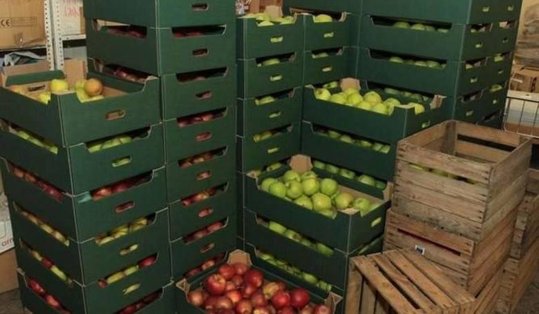 Skup jabłek przez Eskimos. Pieniądze za jabłka są, ale... nie całe kwoty