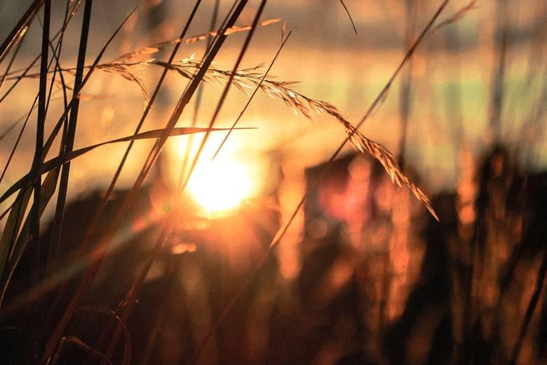 Pogoda w woj. lubelskim. Przed nami dwa ostatnie dni ciepła. Po nich przyjdzie spore ochłodzenie. Sprawdź prognozę