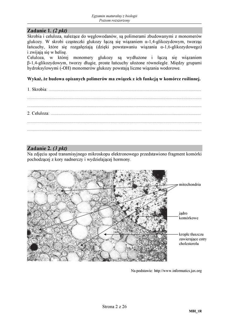 matura 2011 biologia rozszerzona odpowiedzi