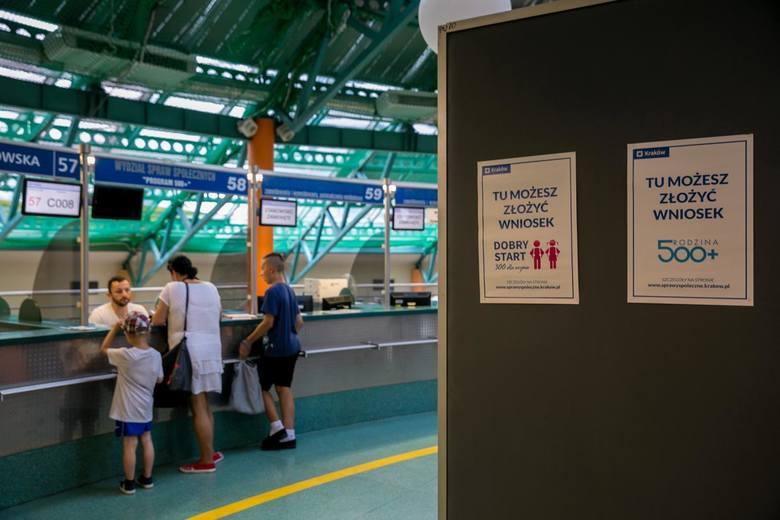 Na co Polacy korzystający z programu 500  na pierwsze dziecko, planują przeznaczyć dodatkowe fundusze? Co trzecia osoba wykorzysta te fundusze na edukacje