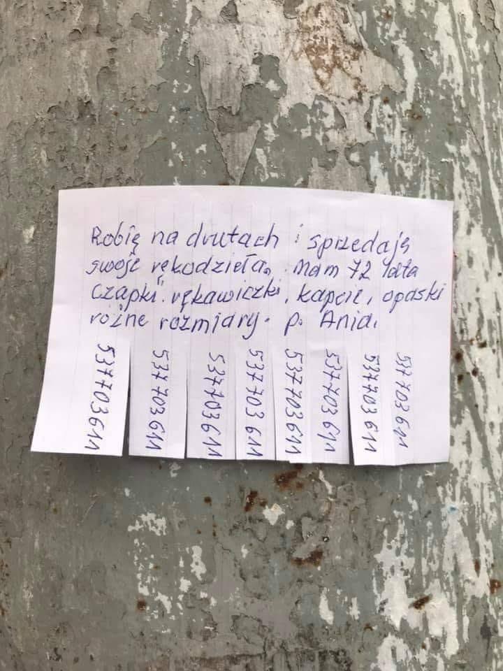 Zdjęcie ogłoszenia pani Ani, które wisi na słupie przy ul. Sępa-Sarzyńskiego we Wrocławiu