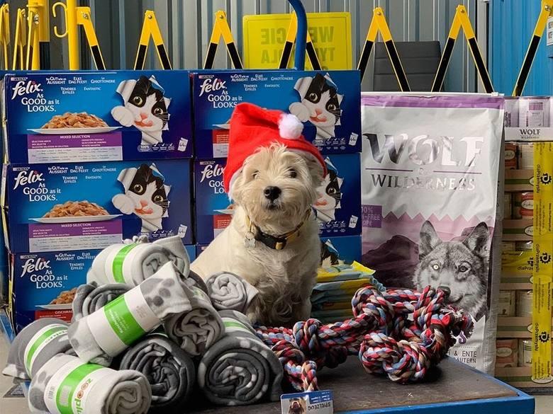 Akcja Choinka dobroci – świąteczne wsparcie od Dla-przemysłu