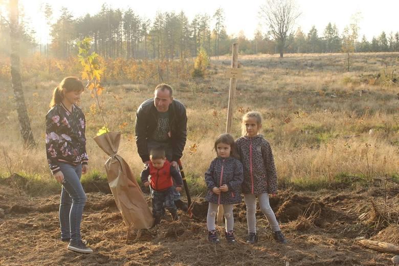 """W Nadleśnictwie Bytów na terenie leśnictwa Czarna Dąbrowa w okolicach miejscowości Półczno została zorganizowana akcja pod hasłem """"Jedno dziecko-jedno"""