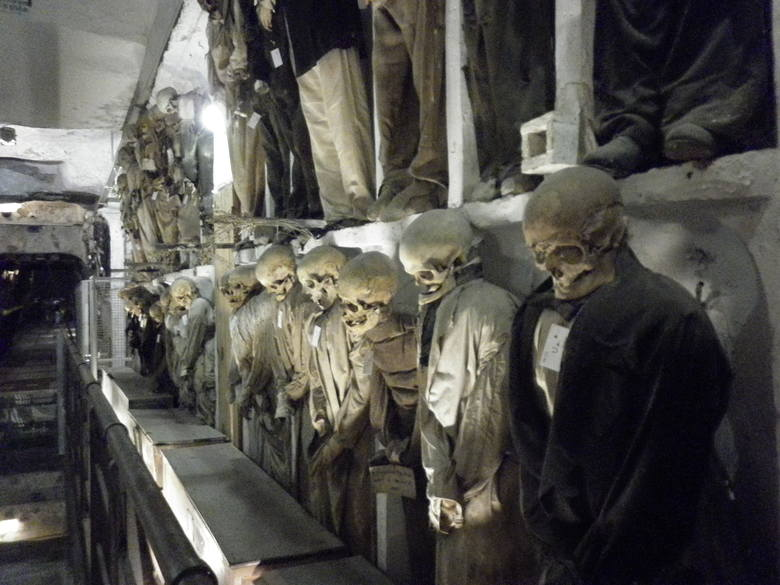 Wydawałoby się, że cmentarz to miejsce spoczynku po śmierci. I to jest prawda. Warto jednak pamiętać, że cmentarz to także miejsce niezwykłe, gdzie świat
