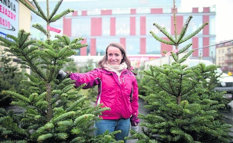 Święta bez choinki to nie święta. Jedni z nas wolą sztuczne drzewka, inni nie wyobrażają sobie Bożego Narodzenia bez świerkowego zapachu. Sprawdzamy,