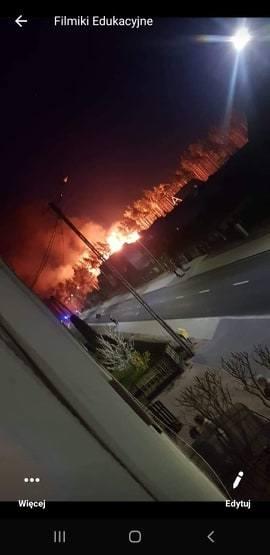Pożar w Lubni 12.04.2020 r. Paliła się sterta drewna. Wielka łuna ognia nad lasem. Na miejscu 16 zastępów straży pożarnej