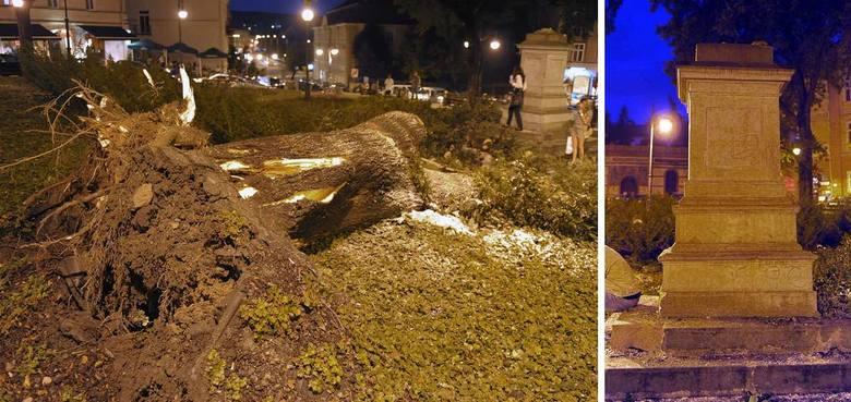 Upadająca lipca zniszczyła pomnik Adama Mickiewicza.