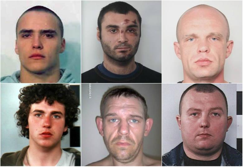 Oto zdjęcia osób poszukiwanych przez wielkopolską policję m.in. za pobicia, rozboje i oszustwa. Prezentujemy nazwiska i listy gończe. Zobacz galerię