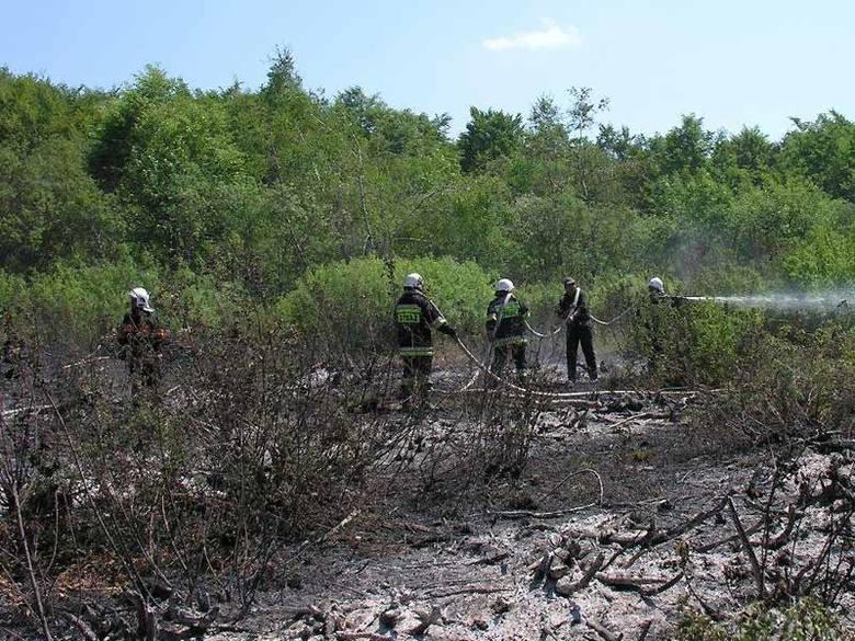 Pożar w rezerwacie przyrody w Beskidzie Niskim