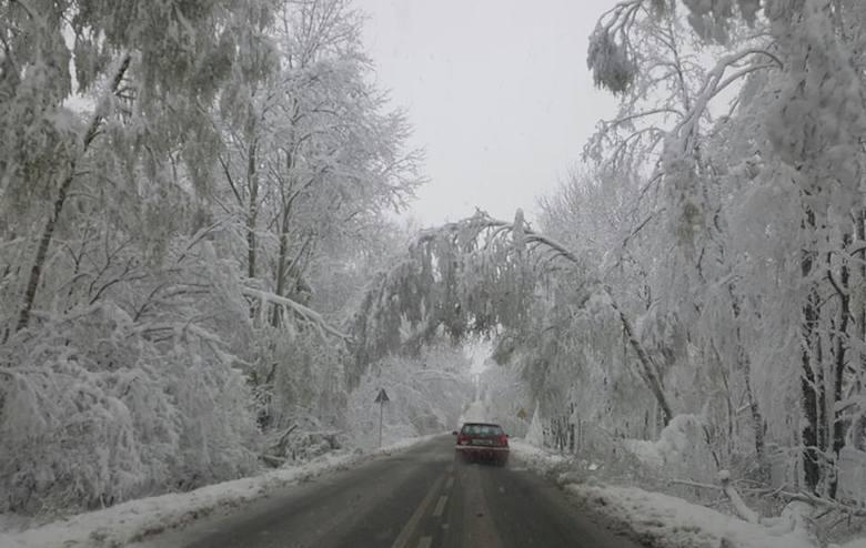 Atak zimy 19.4.2017: Trasa między Wygodą a Sobuczyną po Częstochową.