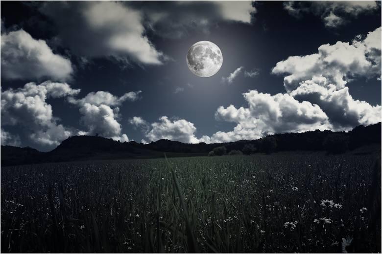 W czerwcu kalendarz Księżycowy oraz prace w ogrodzie skomplikują dwa zaćmienia, które nastąpią w tym miesiącu. Będzie to zaćmienie Księżyca – 5 czerwca