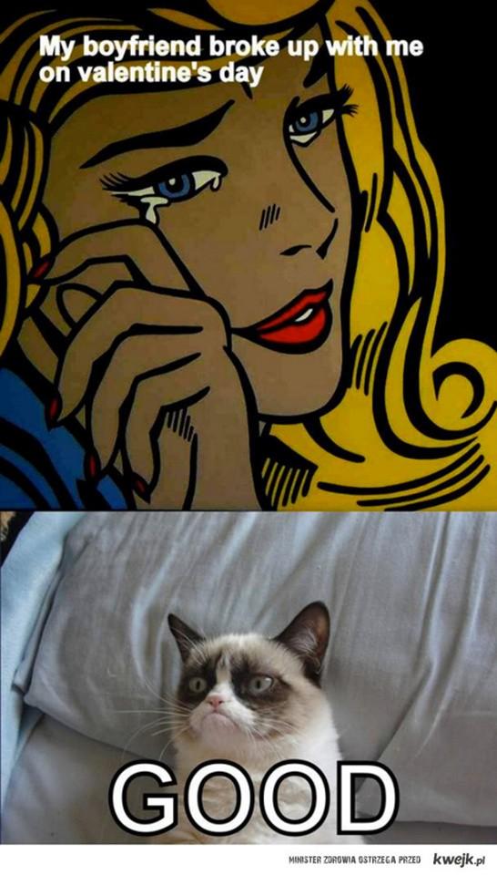 dzie kota 2016 koci celebryta   zrz dliwy kot grumpy cat