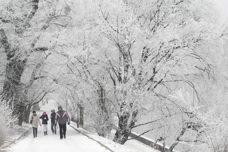 PROGNOZA POGODY NA ZIMĘW grudniu doświadczymy zmiennej pogody z deszczem i śniegiem z deszczem. A mrozów możemy spodziewać się już na początku stycznia.