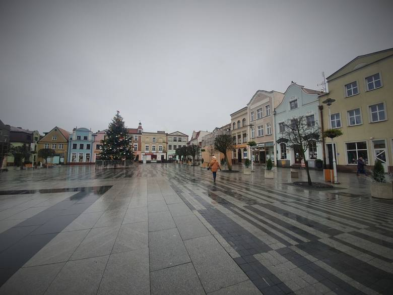Krzywa choinka na Starym Rynku w Pucku już stała się hitem miasta