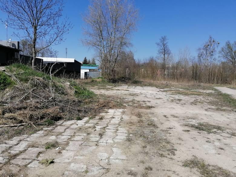 Zlikwidowali największe śmietnisko we Włodawie. Zobacz zdjęcia