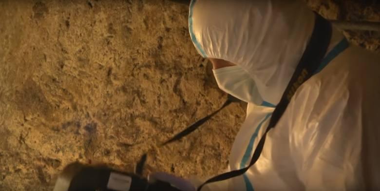 Szczątki kobiety znalezione w piwnicy po 18 latach [wideo, zdjęcia]