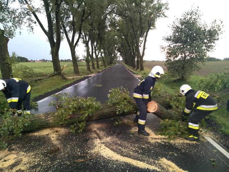 Burze we Wrocławiu i na Dolnym Śląsku. Pół tysiąca interwencji straży, połamane drzewa, zatrzymane pociągi [GDZIE JEST BURZA - 5.09.2020]