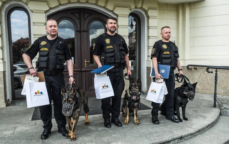 Adam Domański, Wojciech Sobociński i Marcin Tomys to trzej bydgoscy strażnicy miejscy, którzy w zeszłym tygodniu uratowali leżącego bez ruchu psa, znalezionego