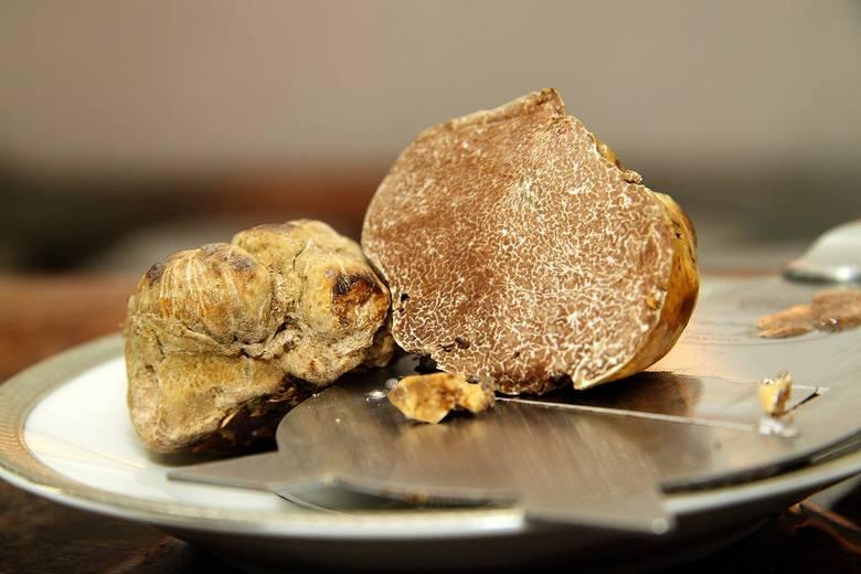 TrufleTrufle, szczególnie zaś białe, uznawane są za najdroższe grzyby świata. W zestawieniu z pokaźnymi rozmiarami, które potrafią osiągnąć, potrafią