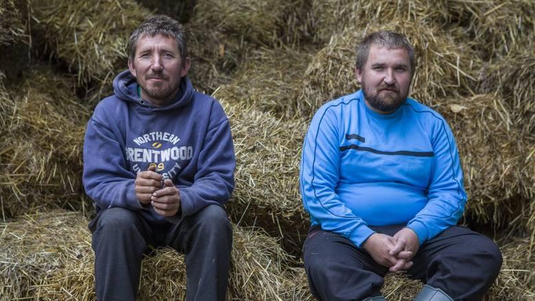 Rolnicy. Podlasie - odcinek 3. Krowa uciekła rolnikom z Plutycz. Andrzej i Gienek ruszyli za nią w pościg! Co wydarzyło się w 3. odcinku?