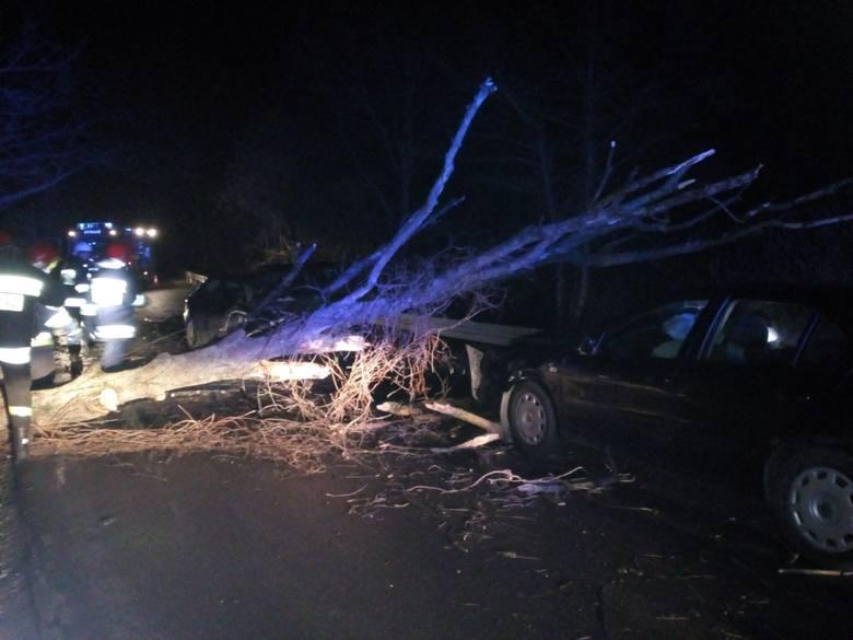 Jak ustaliła policja, kierowca audi jechał w stronę Łukawca. Samochód najechał na powalone przez wiatr drzewo, a potem uderzył w seata toledo, który