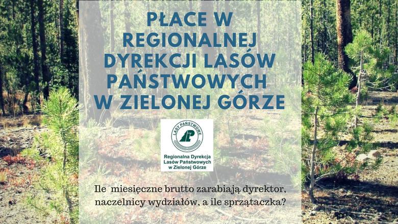 Zarobki w Regionalnej Dyrekcji Lasów Państwowych w Zielonej Górze nie należą do najmniejszych. Jednak jak podkreśla dyrektor Wojciech Grochala, Lasy