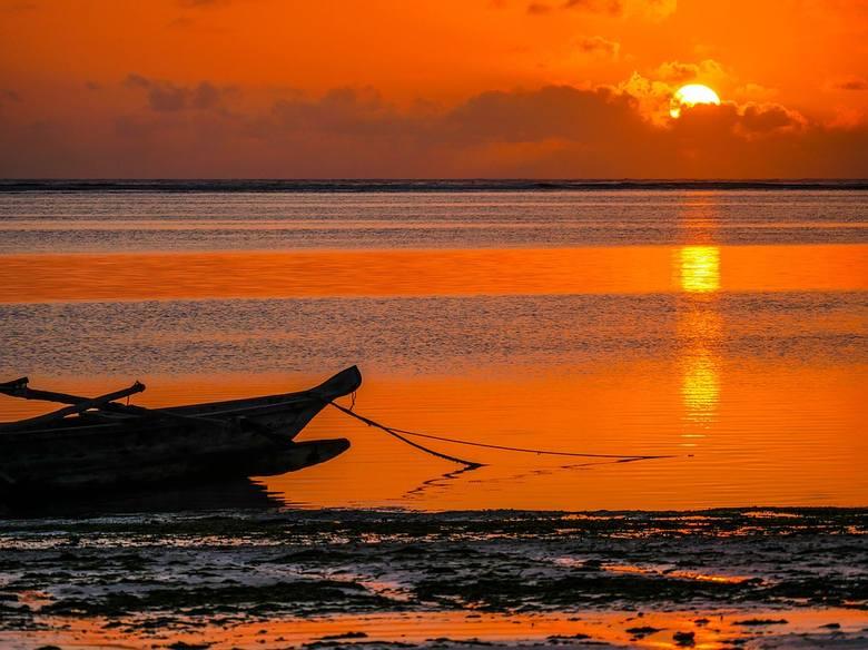 Pół roku pracy na Zanzibarze. To brzmi nieźle