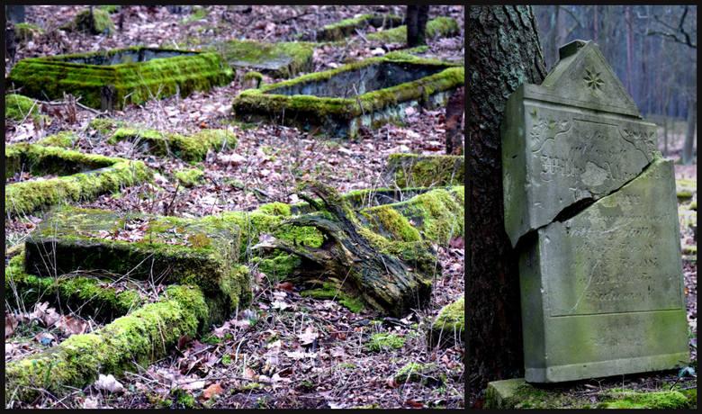 cmentarz ewangelicki z przełomu XIX i XX wieku w Zielonej Górze Janach