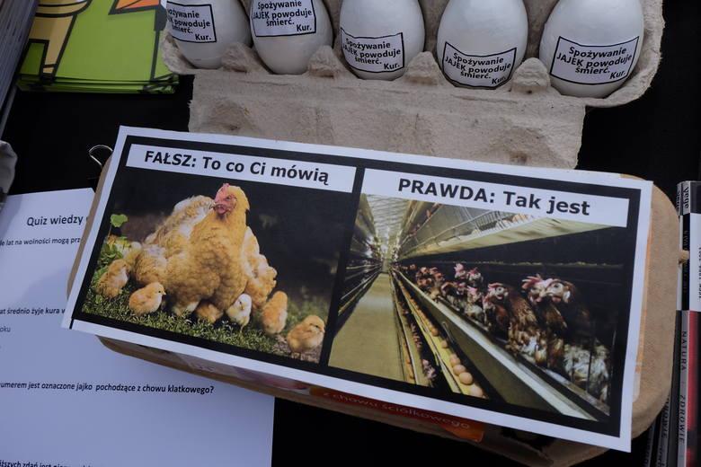 Białystok. Wegestok - Viva! W te święta popieram zwierzęta. Aktywistka zamknęła się w klatce na Rynku Kościuszki w Białymstoku