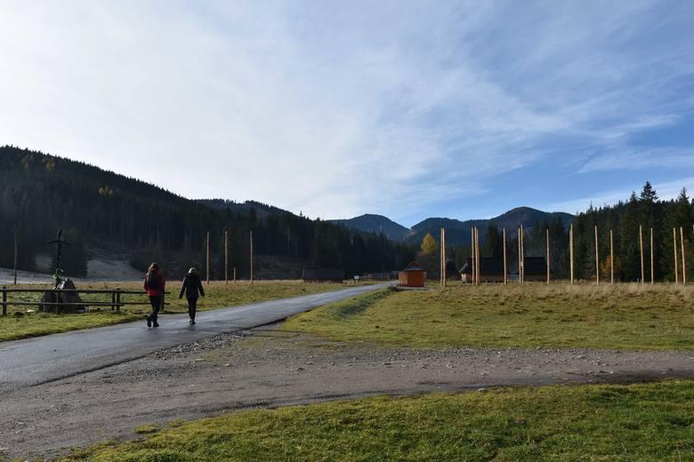 Tatry. Na Siwej Polanie powstaje park linowy. Sprawę bada nadzór budowlany [ZDJĘCIA]