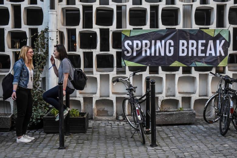 Meskalina podczas Spring Break 2016