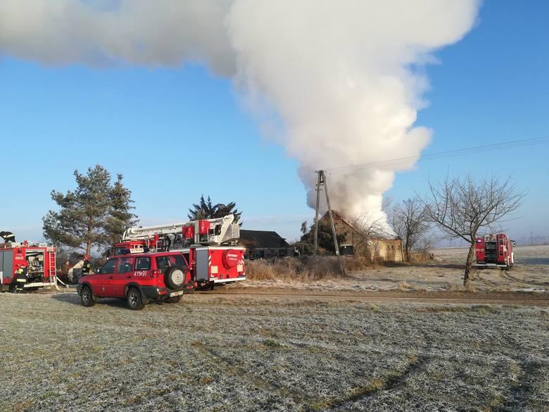 Dom spłonął doszczętnie. Nie nadaje się do zamieszkania. Poszkodowani to 60-letni bracia. W akcji wzięło udział siedem zastępów straży pożanej, w tym