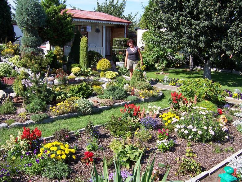 Wraz z ociepleniem zaczęła się inwazja szkodników w ogrodzie. Na roślinach pełno mszyc, a olbrzymie chrabąszcze majowe wręcz obcinają młode pędy wielu