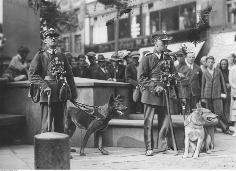 Starszy ułan Stanisław Grabarek (z lewej) oraz chorąży Mikołaj Waloszewski z  psami Rolfem i Reno witani na Rynku Staromiejskim w Toruniu