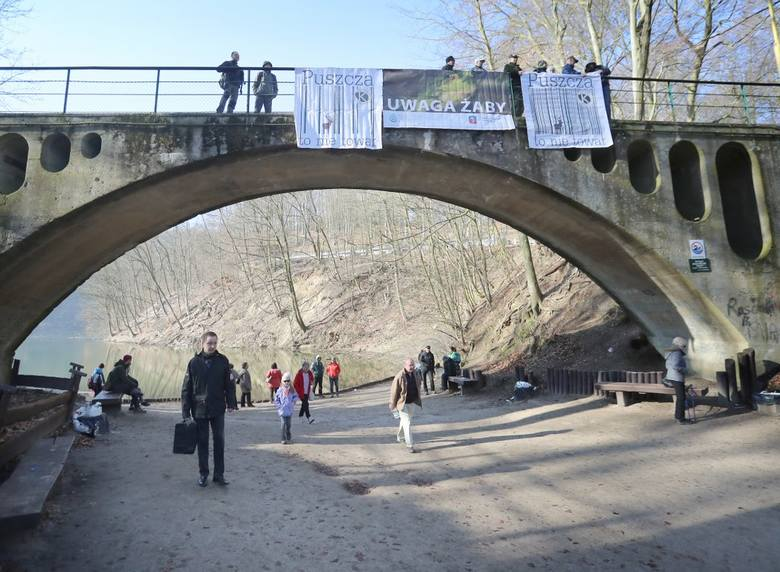 Protest za nami, ale to jeszcze nie koniec walki o Puszczę Bukową
